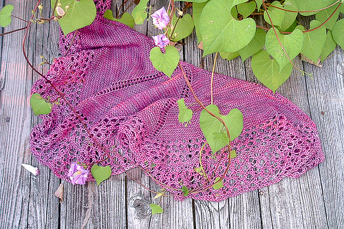 Lumina shawl | The Knitting Vortex