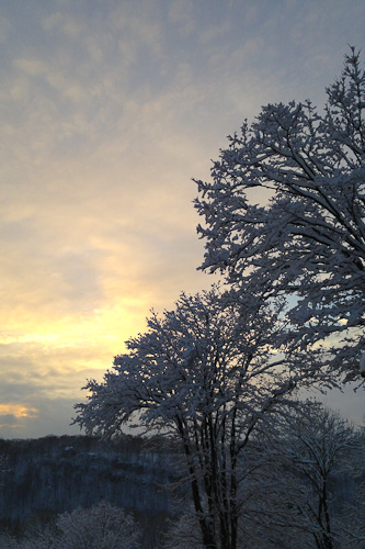 Wordless 2.5.2014 Sunset Snow | The Knitting Vortex