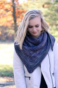 Courser Shawl Front | The Knitting Vortex