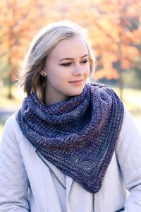 Courser Shawl | The Knitting Vortex